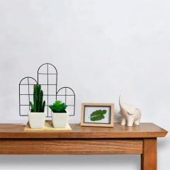 Prateleira Decorativa Cacto Aramado Vaso Planta Suculenta