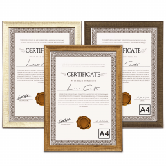 10 Moldura Quadro Certificado Diploma Fotos A4 24x32,5cm